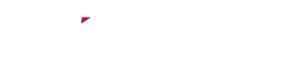 NGU Consultants Inc.